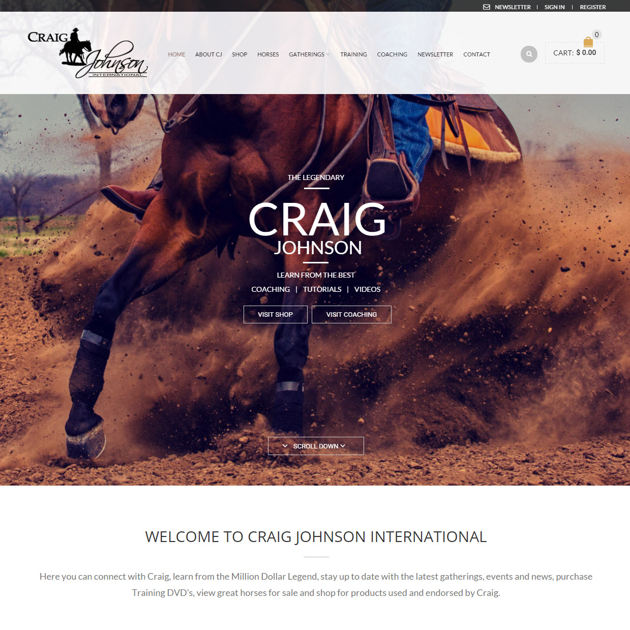 Craig-Johnson-Wordpress-eCommerce-website