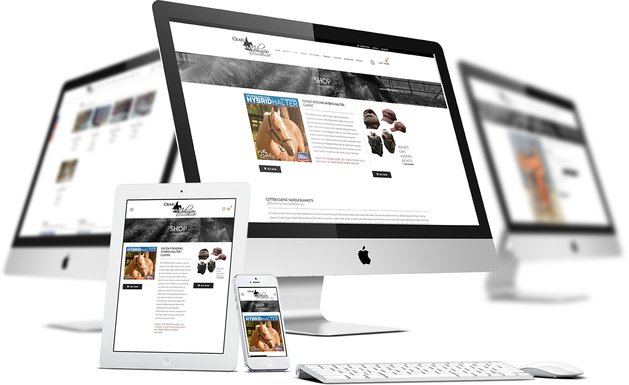 Craig-Johnson-responsive-online-shop-wordpress-ecommerce