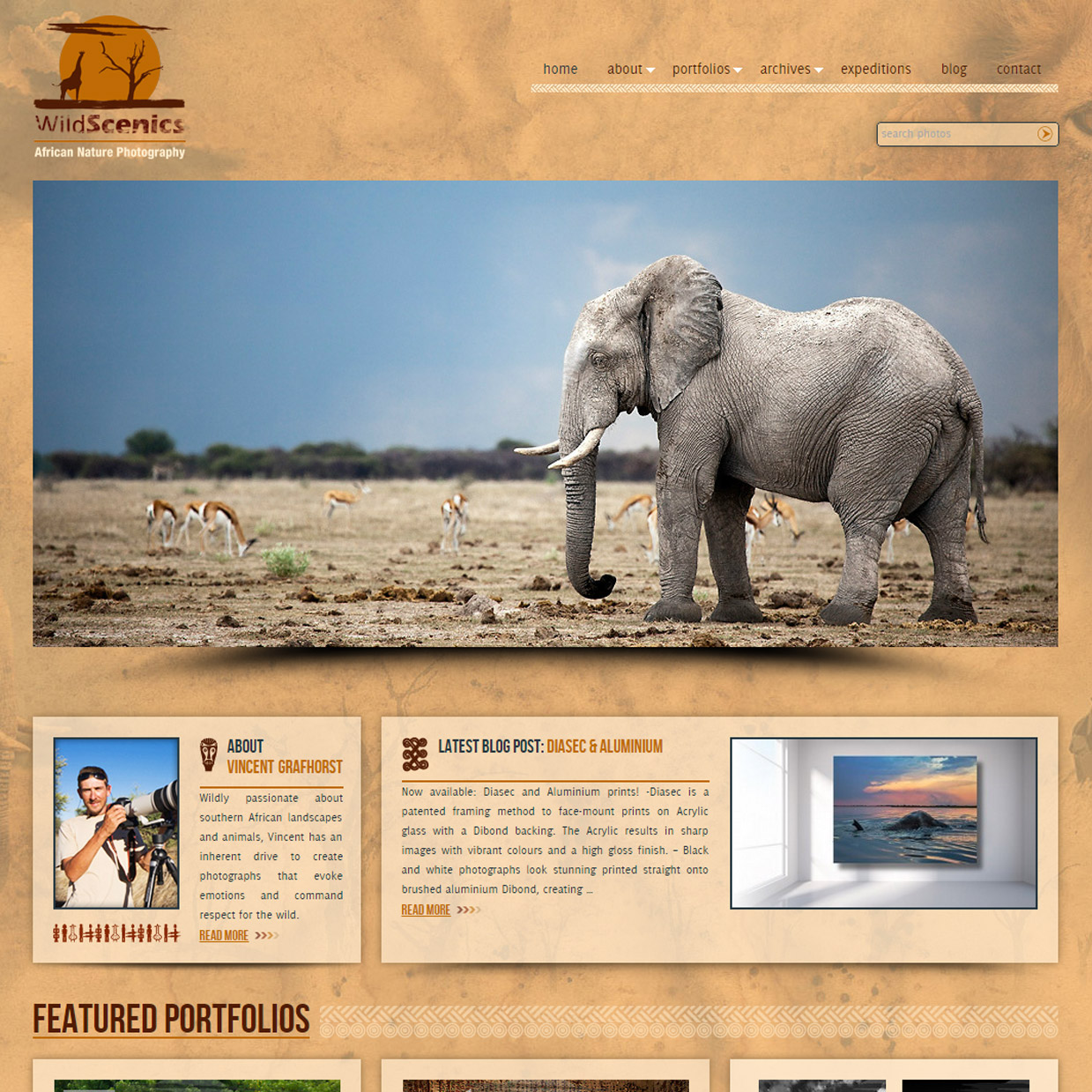 Wordpress-custom-theme-and-complete-Photoshelter-integration