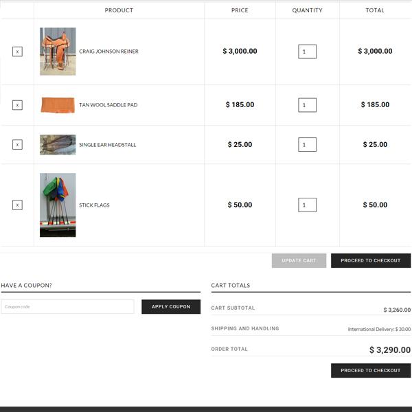 Craig-Johnson-Cart-page-Wordpress-eCommerce
