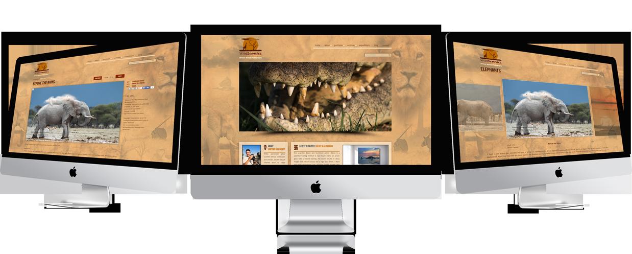 Perfect-Wordpress-Photoshelter-customization-and-integration